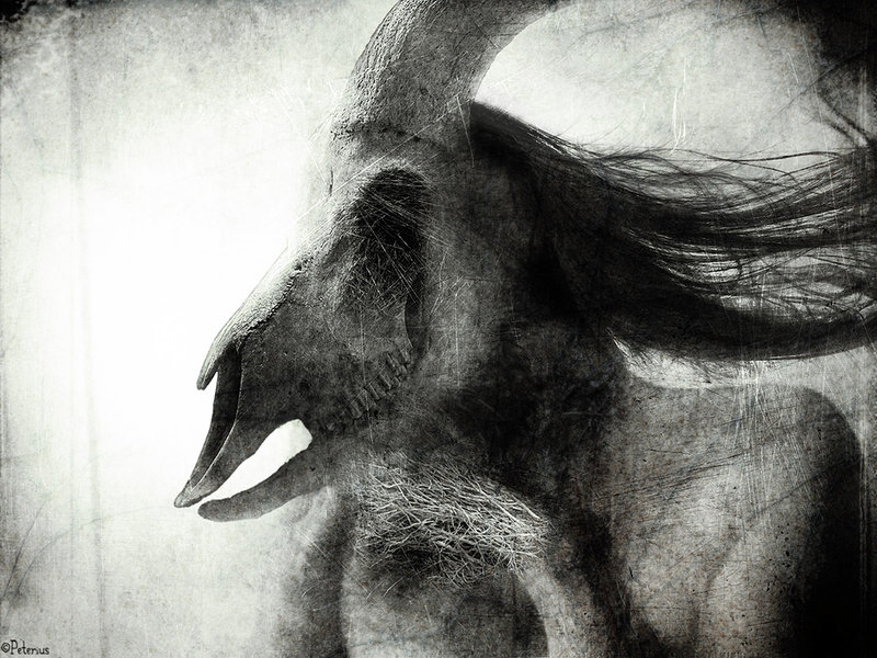 agnus_dei_by_Peterio